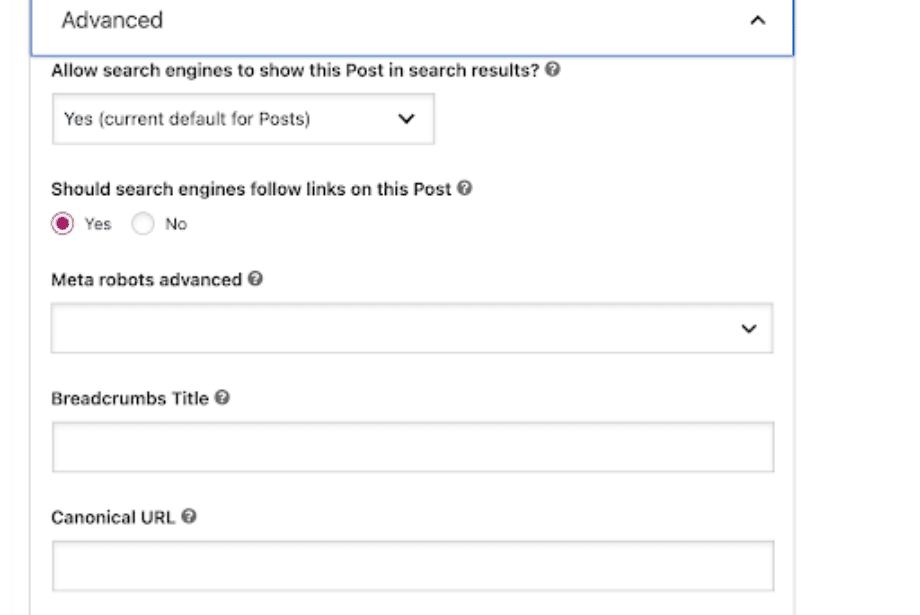 WordPress Canonical Tag Setting process